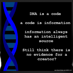 dna-code_design.png